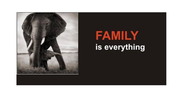 FamilyFinal